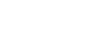 littlebrother_logo_white-01